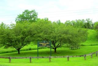 Magill Hill Park