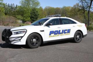 Solebury Township Police Car